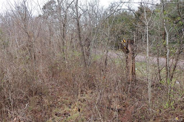 0 9.04 Acres - Dittmer  Road -3