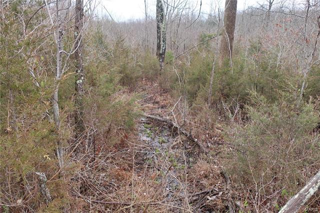 0 9.04 Acres - Dittmer  Road -6